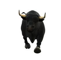 Toro Intereconomía. Un proyecto de  de Maya Velasco-Castillo - 07-04-2010
