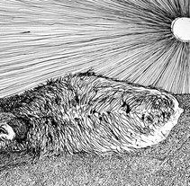 Indi. Um projeto de Ilustração de David  Alvarez Pardo - 29-01-2011