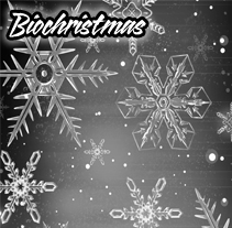 Biochristmas. A Design, Installations, and UI / UX project by Guillermo Ronda Arán - 25-10-2011