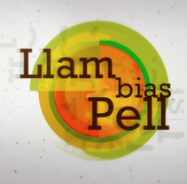 Demo Reel. A Motion Graphics, Film, Video, and TV project by Llambias Pell         - 27.02.2012