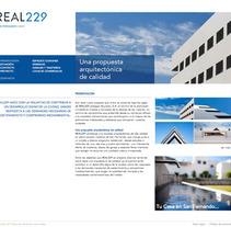 REAL229. Un proyecto de Desarrollo de software de Francisco Bueno         - 06.06.2012
