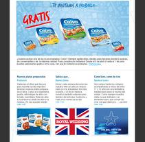 Newsletter Calvo: Te invitamos a probarlo.. Un proyecto de Diseño de Luis Briones - 31-01-2013