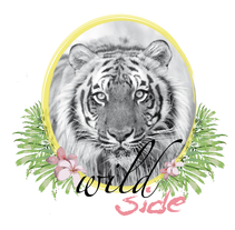 WILD side. A  project by Laura Tango         - 29.05.2013