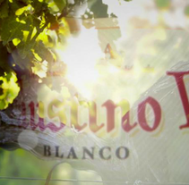 Faustino V Chardonnay. A Motion Graphics, Film, Video, TV, and 3D project by Yon González de Amezúa         - 21.07.2013