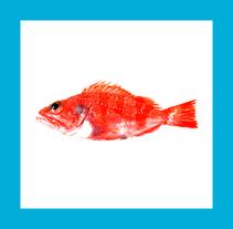 Fishop UI + Branding. Un proyecto de Desarrollo de software, UI / UX, Br e ing e Identidad de walrus.  - 06-05-2014