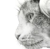 Zurita. Un proyecto de Ilustración, Fotografía y Bellas Artes de Guillem Bosch Ramos         - 27.05.2014