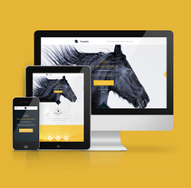 Bucephalus. A Web Design project by Fernando Báez - 11-08-2014