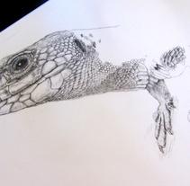 Ocellated lizard (work in progress). Um projeto de Design, Ilustração e Artes plásticas de Joana Araújo Bruno         - 29.08.2014