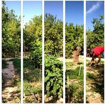 Fotografía móvil . Un proyecto de Fotografía de Tania Martín - 08-09-2014