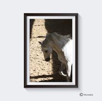 Expo fotos. Un proyecto de Diseño, Publicidad, Fotografía y Bellas Artes de Montse Barcons - 19-09-2014