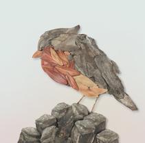 Creación artística y personal >> petirrojo >> muerte y belleza ajena. Un proyecto de Dirección de arte, Bellas Artes y Collage de Sofia Nieto - 03-08-2013
