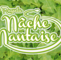 IMAGEN CORPORATIVA NACHE NANTAISE. A Graphic Design project by JUAN GRAJALES         - 05.09.2015