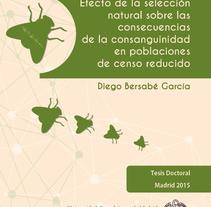 Tesis doctoral. Un proyecto de Educación de M.A. Serralvo - Viernes, 06 de febrero de 2015 00:00:00 +0100