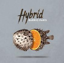 """""""Hybrid"""" album cover for Barrio París. Un proyecto de Ilustración, Dirección de arte y Diseño gráfico de Yeray Vega Fernandez de Labastida - 05-11-2015"""