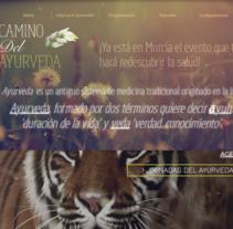 Diseño Web. A Web Design project by Lydia Olivares         - 20.12.2015