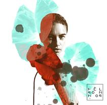 wild-goose chase. Un proyecto de Diseño, Ilustración y Diseño gráfico de Helena Aparicio Navas - 25-01-2016