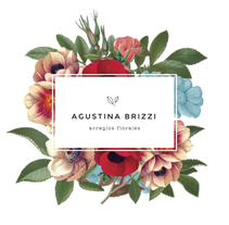 Branding / Agustina Brizzi. A Graphic Design, and Web Design project by Milagros Bianchetti         - 25.01.2016