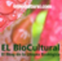 El Biocultural. A Social Media project by Paco Maestre         - 26.10.2016