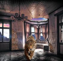 Jaguar House. Un proyecto de Diseño de Matías Adaro         - 17.04.2017