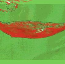 Una ballena se balanceaba........... A Illustration, and Animation project by manologv         - 09.04.2018
